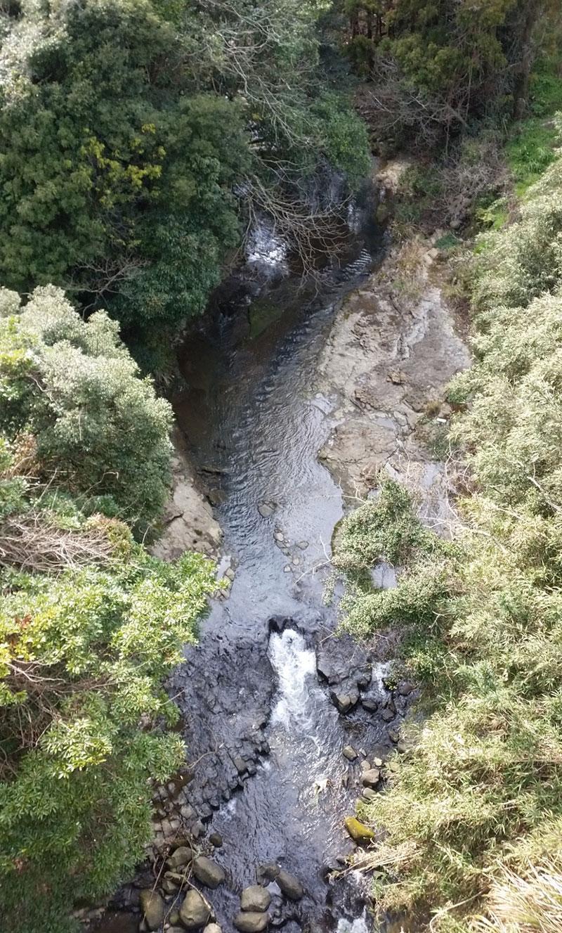 写真:福井川から佐々川への流入